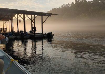 Beautiful Arkansas morning!